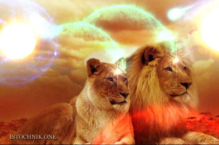 портал 8 8 врата львов