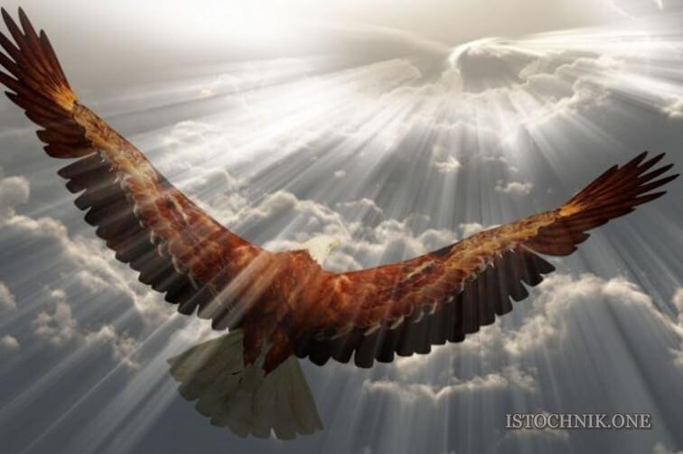 полет с духовным фокусом в 2021 году